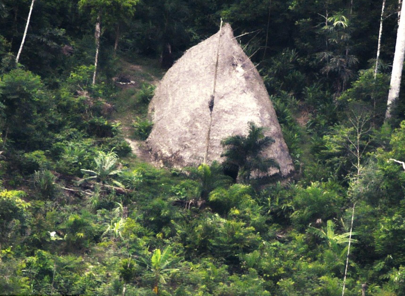 Drone Footage Amazon